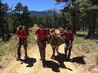 Consider the Source: A Tester Invades Philmont