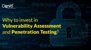 Why to invest in Vulnerability Assessment and Penetration Testing?